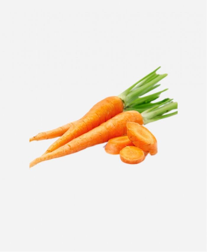 Морковь деревенская